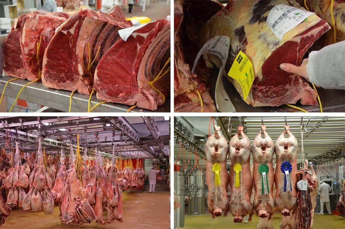 Visite au pavillon de la viande à Rungis