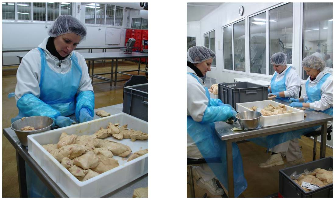 déveinage des foies gras Feyel