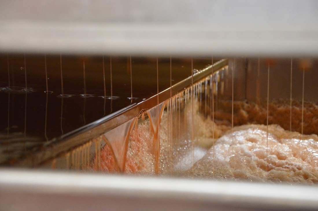 extraction du jus de pommes