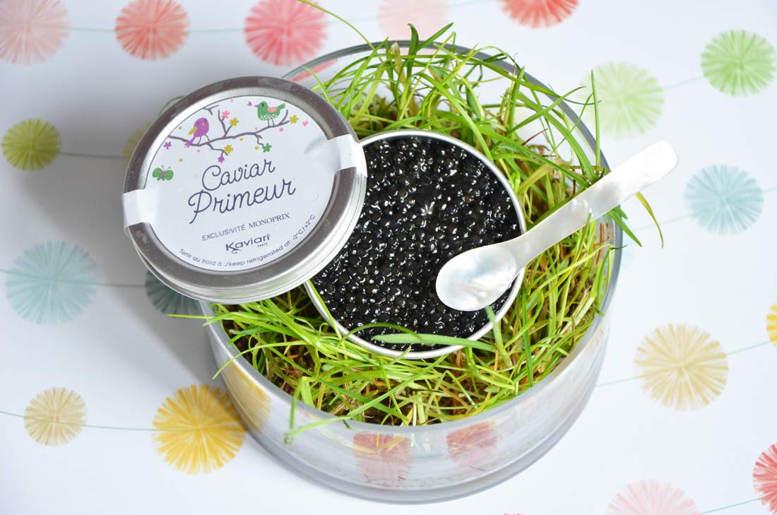 caviar de printemps primeur