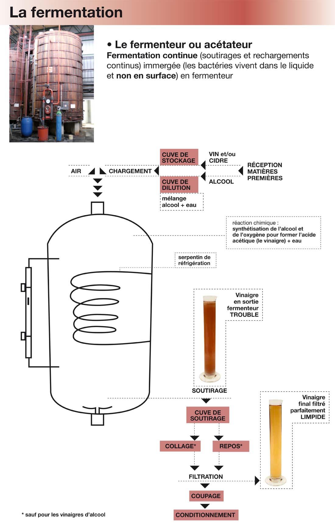 fermentation du vinaigre