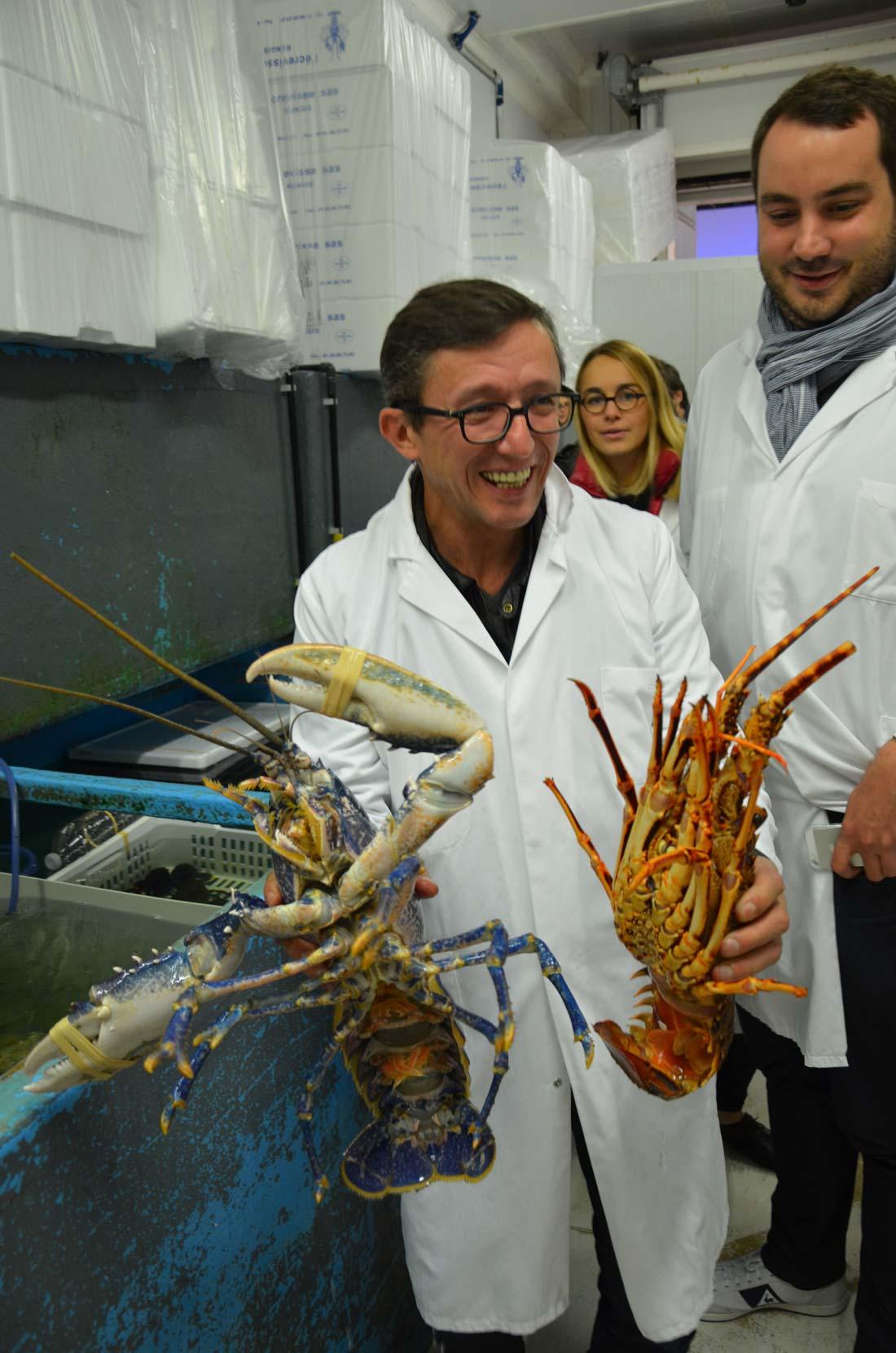 Le Chef Laurent André en visite à Rungis