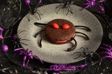 cookies araignées chocolat