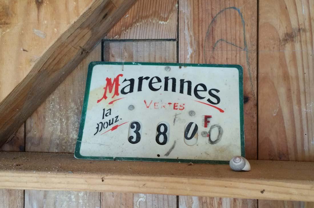 huitres Marennes