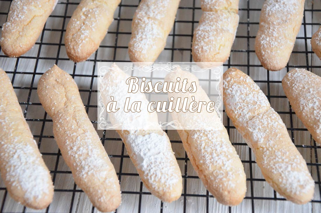 biscuits à la cuillère