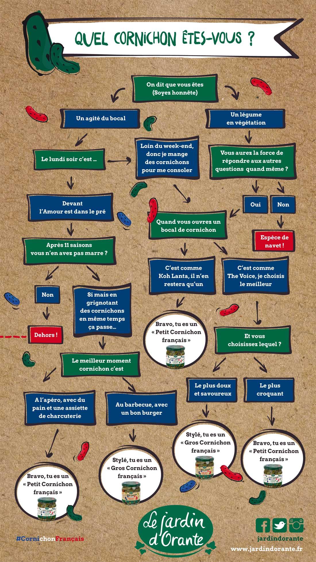 infographie cornichons jardin d'Orante