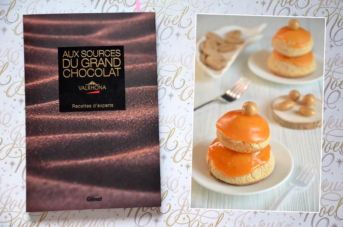 Livre Aux sources du grand chocolat Valrhona