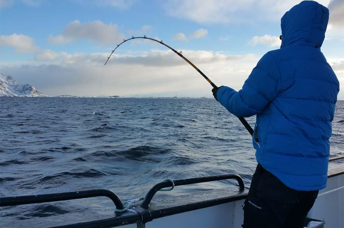 à la pêche au skrei