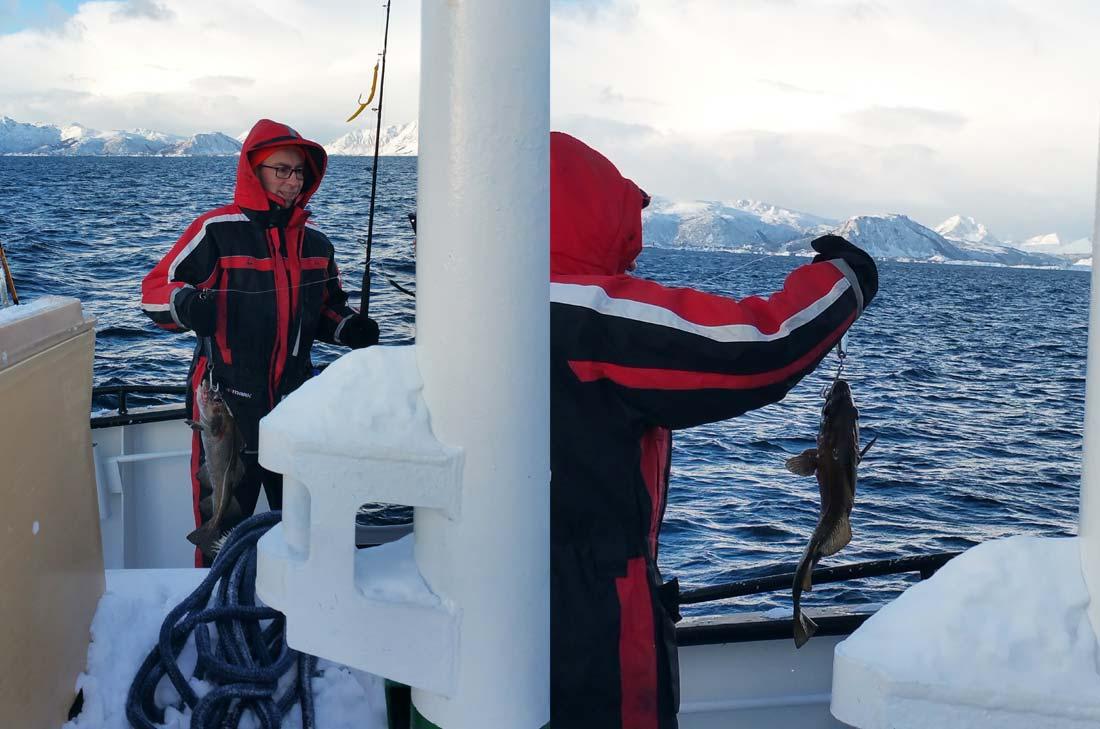 Le Chef Yann Lainé à la pêche au skrei