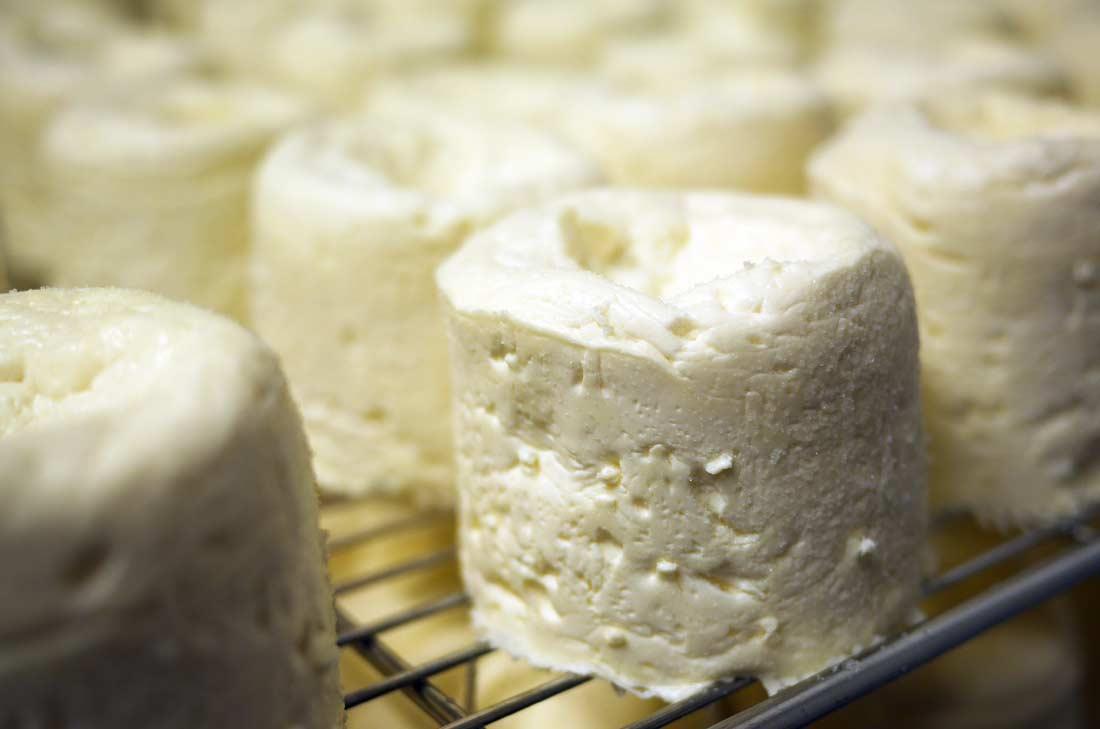 Voyage découverte en Haute-Marne : Fromage de Langres frais et salé