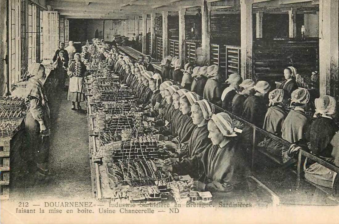 Les Penn Sardin à l'usine Chancerelle