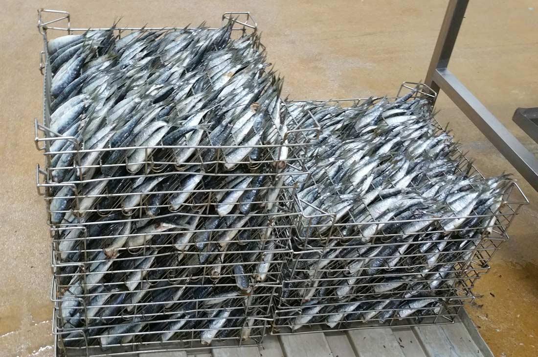 box de sardines chez Connétable
