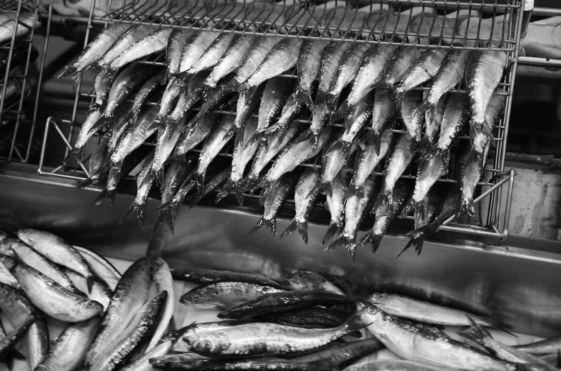 sardines triées, ététées et éviscérées à la main
