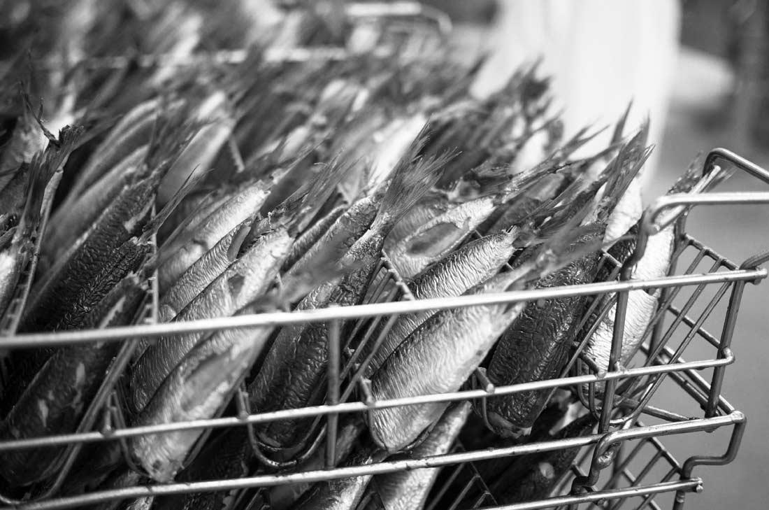 fabrication des boites de sardines Connétable