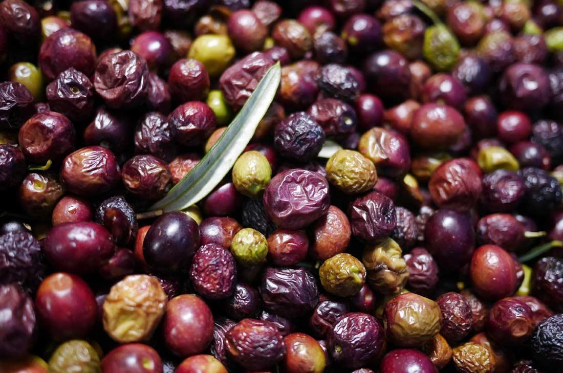 olives chez Jean Martin