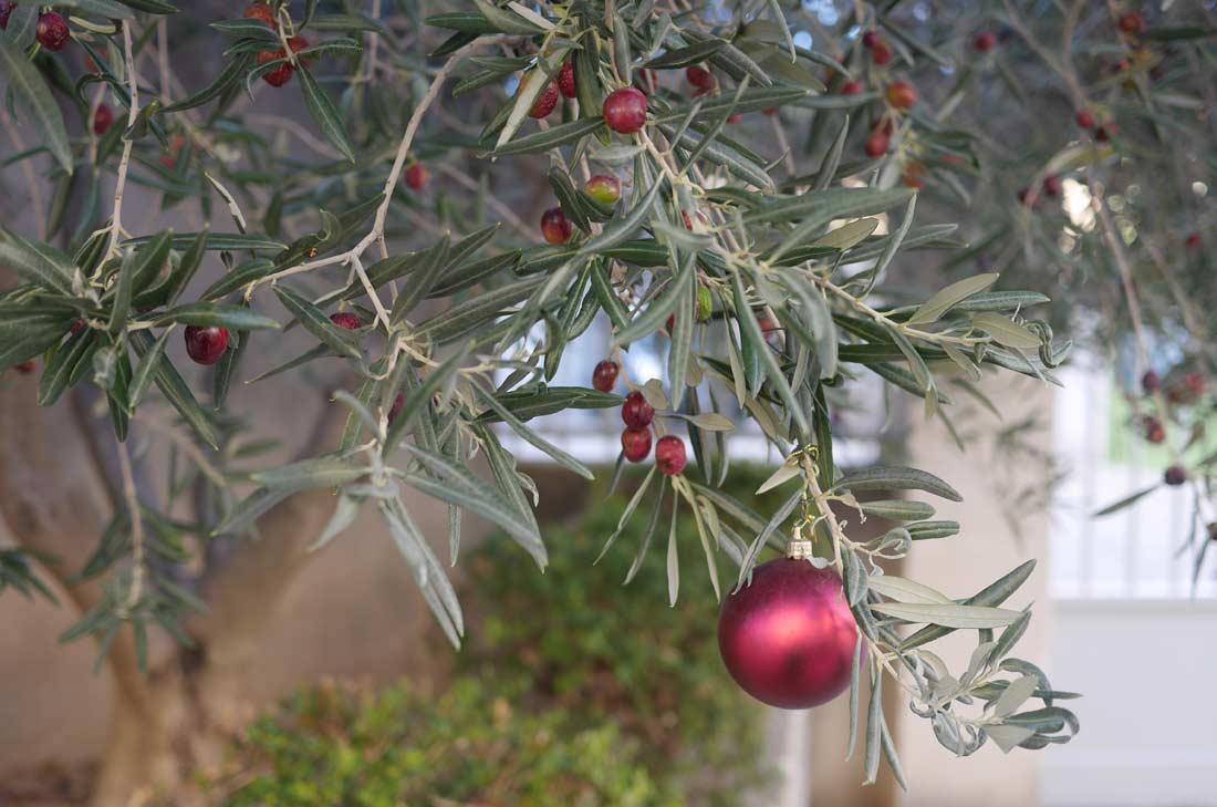 olives de Noël Jean Martin