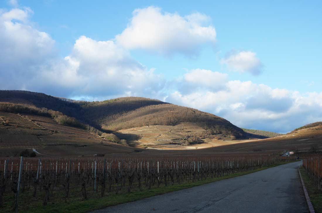 paysage de Kayserberg