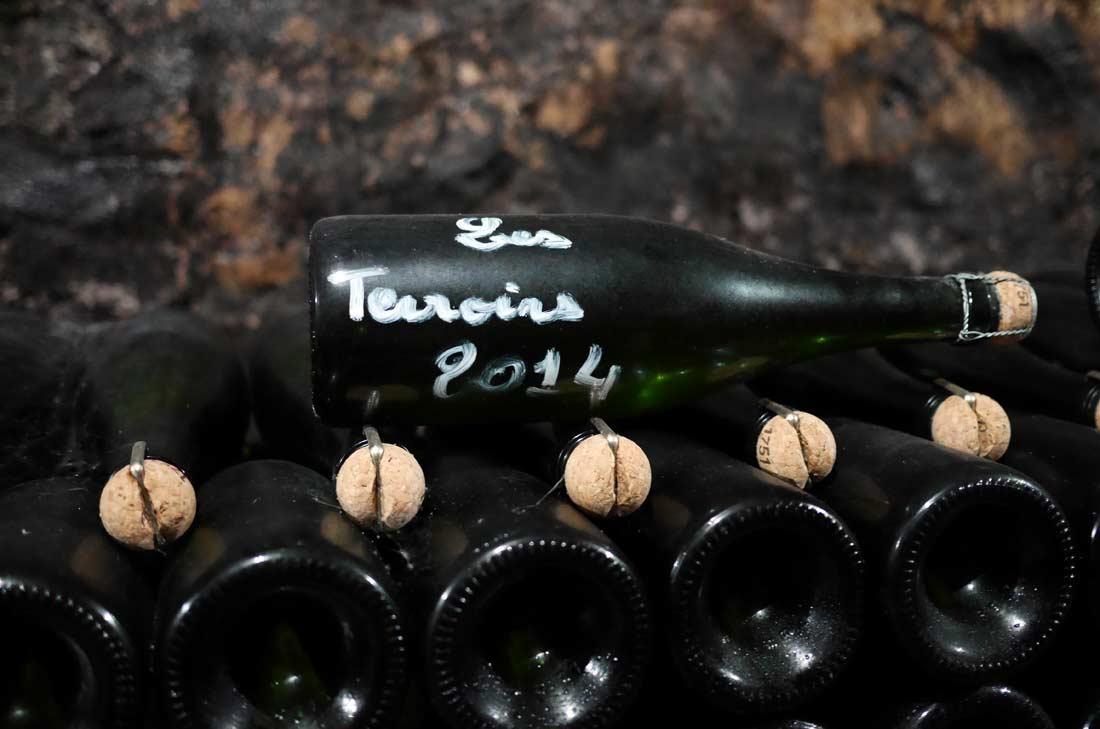 Champagne les terroirs Franck Bonville