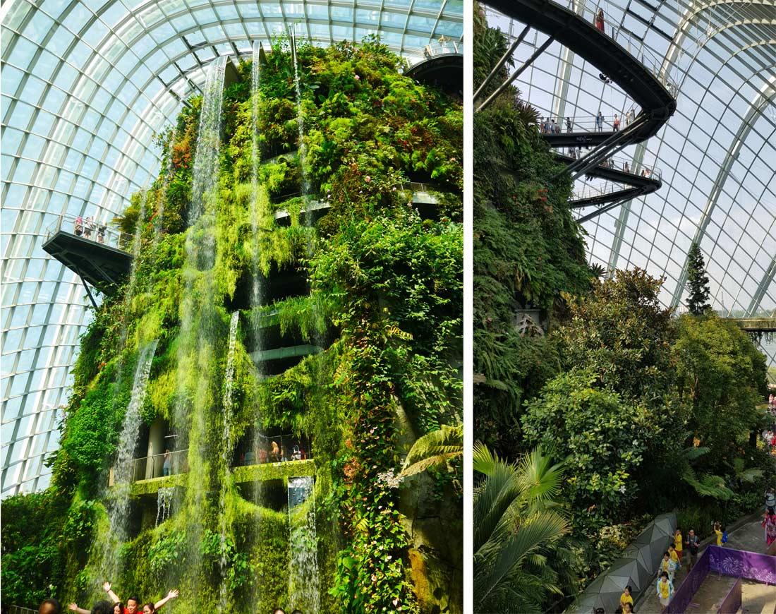 le dôme cloud forest à Singapour