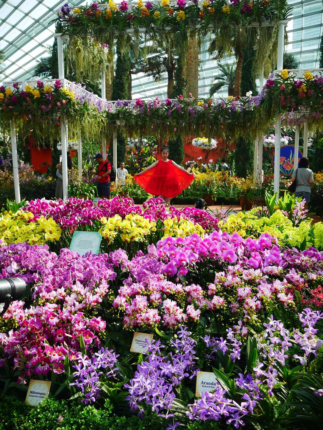 Flower Dome du Gardens by the Bay à Singapour