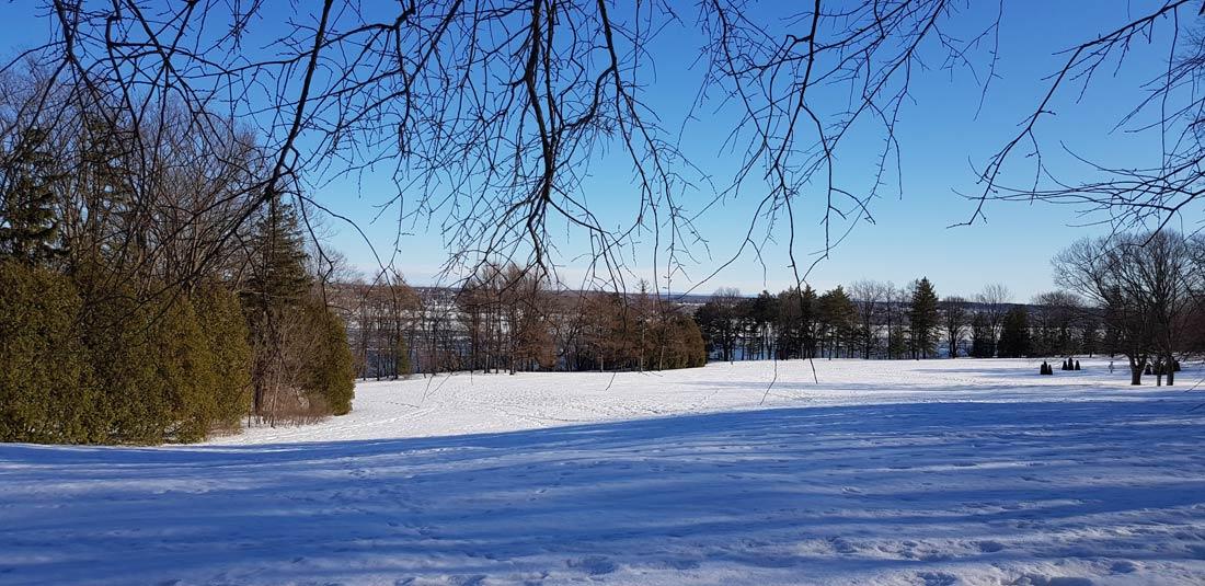 Bois de Coullonges, à Québec