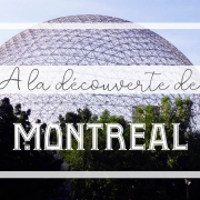 Le dôme géodésique de Buckminster Fuller