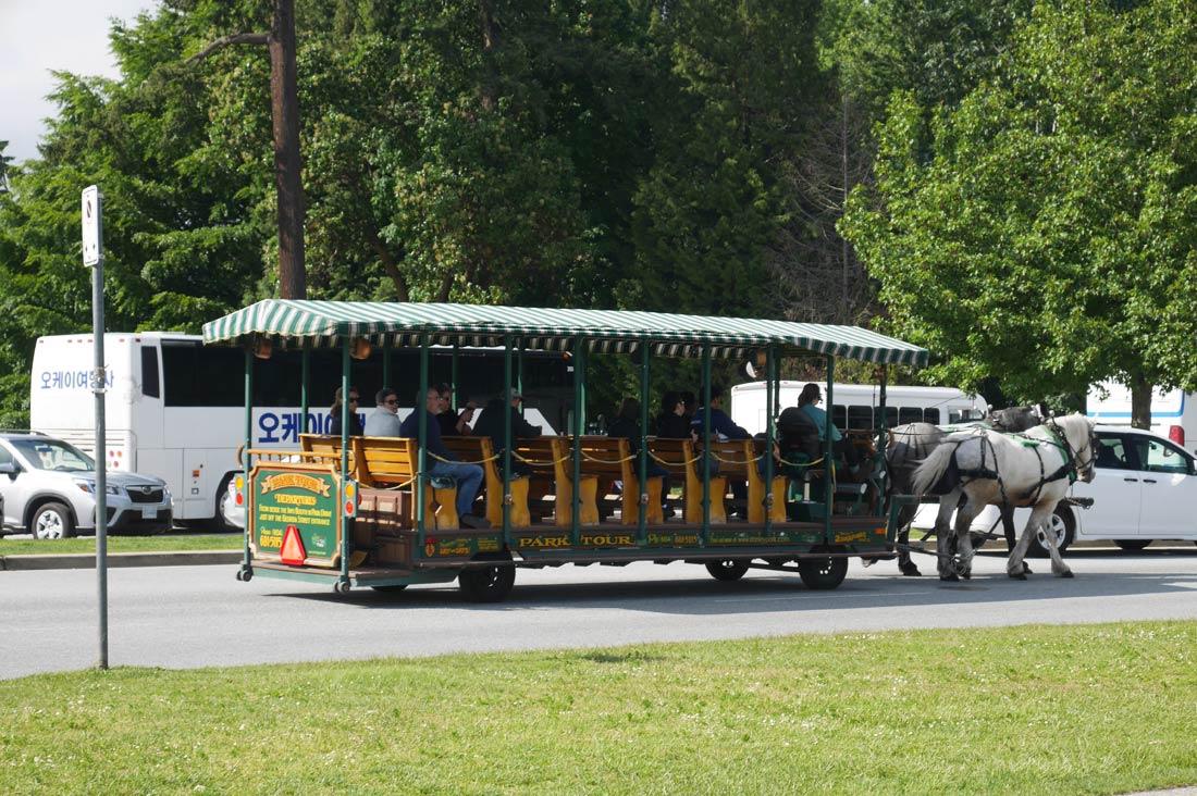 Bus du Stanley Park