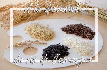 Découvrir les différents riz de Camargue